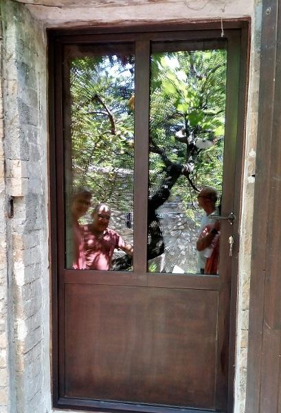 Porte vitrée acier